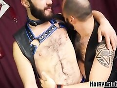 'HAIRYANDRAW Nick Hole Fucked Before Giving Head And Bareback'