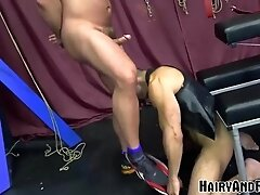 'HAIRYANDRAW Mature Sub Amir Badri Hammered By Muscle Daddy'